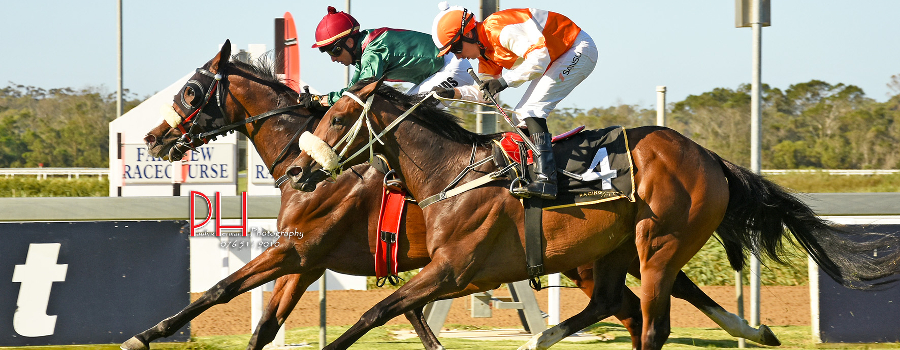 Greeff Stable wins with Cozy Chestnut