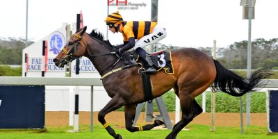 R4 Yvette Bremner Lyle Hewitson Laws Of Succession-Fairview 18-January-2019-1-PHP_1319