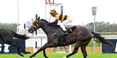 R5 Yvette Bremner Lyle Hewitson March Music-Fairview 1-February-2019-1-PHP_4473