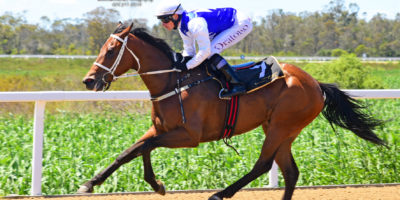 R1 Yvette Bremner Lyle Hewitson Rare Spice-Fairview 2-November-2018-1-PHP_6701