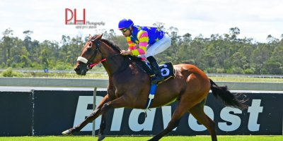 R1 Alan Greeff-Aldo Domeyer-Foreign Source-Fairview 1-March-2019-1-PHP_8784