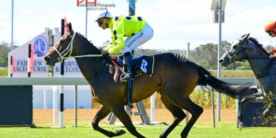 R4 Vaughan Marchall-MJ Byleveld-Charge D'Affaires-Fairview 1-March-2019-1-PHP_8962