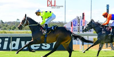 R4 Vaughan Marchall-MJ Byleveld-Charge D'Affaires-Fairview 1-March-2019-1-PHP_8963