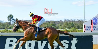 R7 Candice Bass-Robinson -Aldo Domeyer-What A Summer-Fairview 1-March-2019-1-PHP_9066