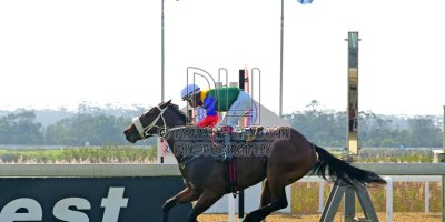 R1 Gavin Smith Muzi Yeni Aemiliano- 31 May 2019-Fairview Racecourse-PHP_0959