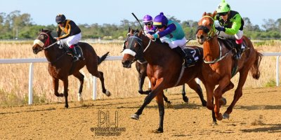 R4 Five Star Racing Shadlee Fortune Victory March- 28 June 2019-Fairview Racecourse-1-PHP_7964