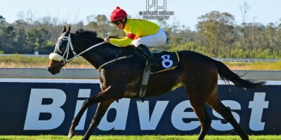 R5 Tara Laing Chase Maujean Para Handy- 26 July 2019-Fairview Racecourse-1-PHP_1869