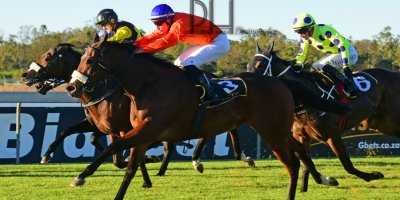 R8 Alan Greeff Bernard FaydH'erbe Rings and Things- 7 June 2019-Fairview Racecourse-1-PHP_5216