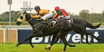 R3 Grant Paddock Teaque Gould Fort Carol- 2 August 2019-Fairview Racecourse-1-PHP_3261