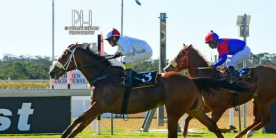 R4 Alan Greeff Teaque Gould African Chime-Fairview Racecourse-9 August 20191-PHP_4645