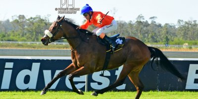 R4 Alan Greeff Teaque Gould Rings n Things-Fairview Racecourse-23 August 20191-PHP_5846