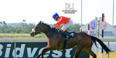 R4 Alan Greeff Teaque Gould Rings n Things-Fairview Racecourse-23 August 20191-PHP_5849