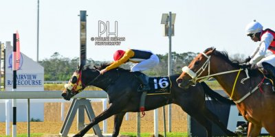 R5 Grant Paddock Jarl Zechner Rock The Cot-Fairview Racecourse-23 August 20191-PHP_5909