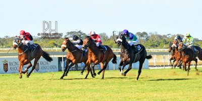 R7 Andre Nel Anthony Andrews Vikram-Fairview Racecourse-30 August 20191-PHP_7059