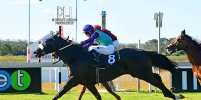 R7 Andre Nel Anthony Andrews Vikram-Fairview Racecourse-30 August 20191-PHP_7065