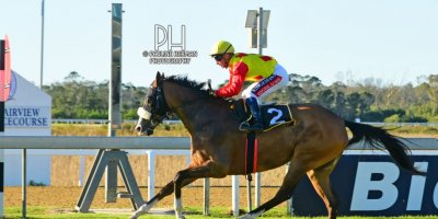 R8 Alan Greeff Greg Cheyne Woodstock Fairy-Fairview Racecourse-9 August 20191-PHP_4983