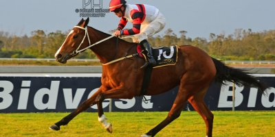 R8 Duncan McKenzie Chase Maujean Bell Tower- 2 August 2019-Fairview Racecourse-1-PHP_3647