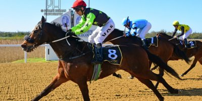 R5 Five Star Racing MJ Byleveld Captain's Vista-Fairview Racecourse-6 September 20191-PHP_8050