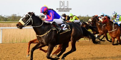 R8 Grant Paddock Chase Maujean Strong n Brave-Fairview Racecourse-20 September 20191-PHP_9700