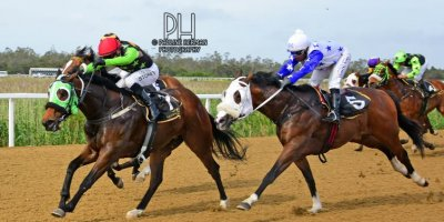 Fairview Racecourse - R7 Five Star Racing Collen Storey The Greek Soldier01 November 2019-1-PHP_6455