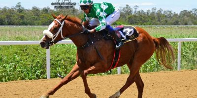 R1 Alan Greeff Charles Ndlovu Step Lively-Fairview Racecourse -15 November 2019-1-PHP_7627