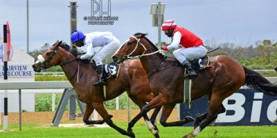R1 Alan Greeff Shoes Nonzonzo Tungsten - Workriders - -Fairview Racecourse -8 November 2019-1-PHP_6769
