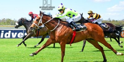 R4 Yvette Bremner Wayne Agrella Sir Frenchie-Fairview Racecourse -27 December 2019-1-PHP_5573