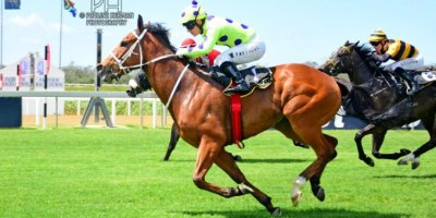 R4 Yvette Bremner Wayne Agrella Sir Frenchie-Fairview Racecourse -27 December 2019-1-PHP_5574