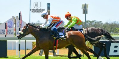 R1 Alan Greeff Greg Cheyne Herrin-Fairview Racecourse-31 JAN 2020-1-PHP_1671