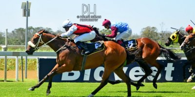 R4 Gavin Smith Julius Mphanya Pomaceous-Fairview Racecourse-31 JAN 2020-1-PHP_1829