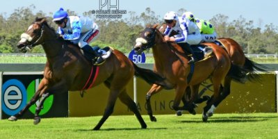 R5 Alan Greeff Greg Cheyne Outlandos D'Amour-Fairview Racecourse-31 JAN 2020-1-PHP_1865