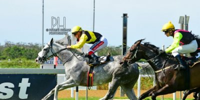 R6 Alan Greeff Greg Cheyne Sunshine Mint-Fairview Racecourse-24 JAN 2020-1-PHP_0469