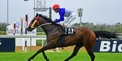 R6 Sharon Kotzen MJ Byleveld Purest Bliss-Fairview Racecourse-3 JAN 2020-1-PHP_8350