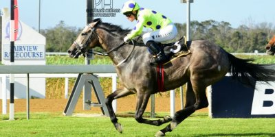 R8 Yvette Bremner Wayne Agrella Grey Mistress-Fairview Racecourse-31 JAN 2020-1-PHP_2137