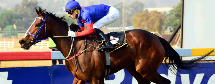 Star Fillies Clash in Western Cape Fillies Championship