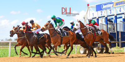 R2 Tara Laing Lyle Hewitson Free Agent-Fairview 7-November-2018-1-PHP_7261 (1)