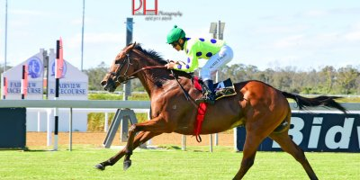 R6 Snaith Racing-Richard Fourie-Sir Frenchie-Fairview 1-March-2019-1-PHP_9030