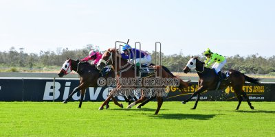 R2 Alan Greeff Teaque Gould Cosy Chestnut-Fairview 3-May-2019-PHP_7696