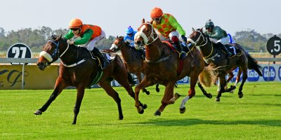 R2 Jacques Strydom Collen Storey Adios Gringos- 31 May 2019-Fairview Racecourse-PHP_1006