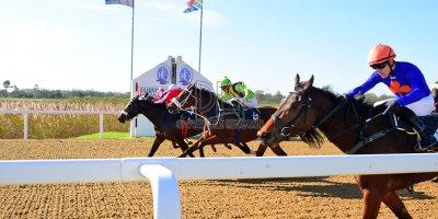 R4 Alan Greeff Greg Cheyne Ice Mint- 17 May 2019-Fairview Racecourse-PHP_0079
