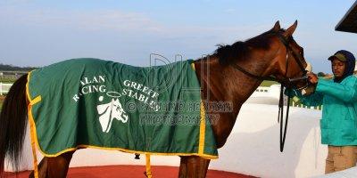 R6 Alan Greeff Bernard Fayd'Herbe Carlita Milkwood Stakes- 31 May 2019-Fairview Racecourse-PHP_1276