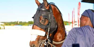 R7 Alan Greeff Teaque Gould Mega Scene- 10 May 2019-Fairview Racecourse-PHP_8674