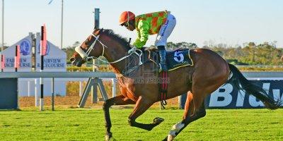 R7 Gavin Smith Muzi Yeni Hooves Of Troy Dahlia Plate- 24 May 2019-Fairview Racecourse-PHP_0813