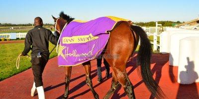 R7 Gavin Smith Muzi Yeni Hooves Of Troy Dahlia Plate- 24 May 2019-Fairview Racecourse-PHP_0857