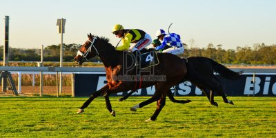 R8 Alan Greeff Greg Cheyne Dame Commander- 24 May 2019-Fairview Racecourse-PHP_0891