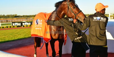 R8 Yvette Bremner Lyle Hewitson Silva Key- 10 May 2019-Fairview Racecourse-PHP_8759