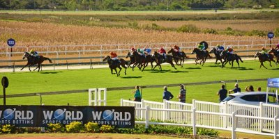 Social Images @ Wolrd Sports Betting East Cape Derby - 11 May 2019-Fairview Racecourse-DSC_0027-min