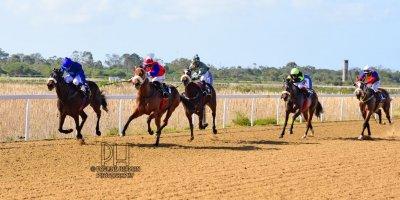 R2 Tara Laing Ryan Munger Captain Anne Bonny- 5 July 2019-Fairview Racecourse-1-PHP_8384