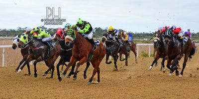 R6 Five Star Racing Devin Ashby For Luck Sake- 8 July 2019-Fairview Racecourse-1-PHP_9473