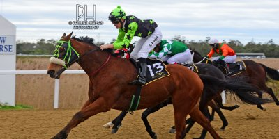 R6 Five Star Racing Devin Ashby For Luck Sake- 8 July 2019-Fairview Racecourse-1-PHP_9477